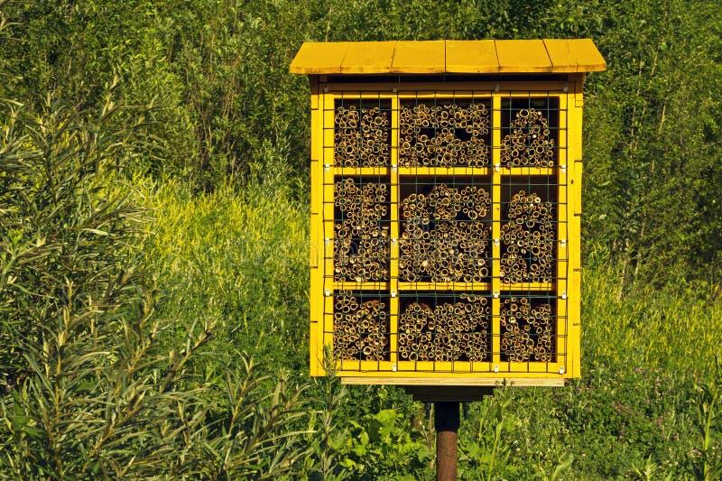 Bloco caseiro do ninho para abelhas de pedreiro para a polinização das plantas imagens de stock royalty free