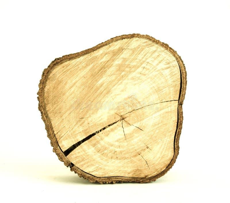 Bloco da árvore fotografia de stock
