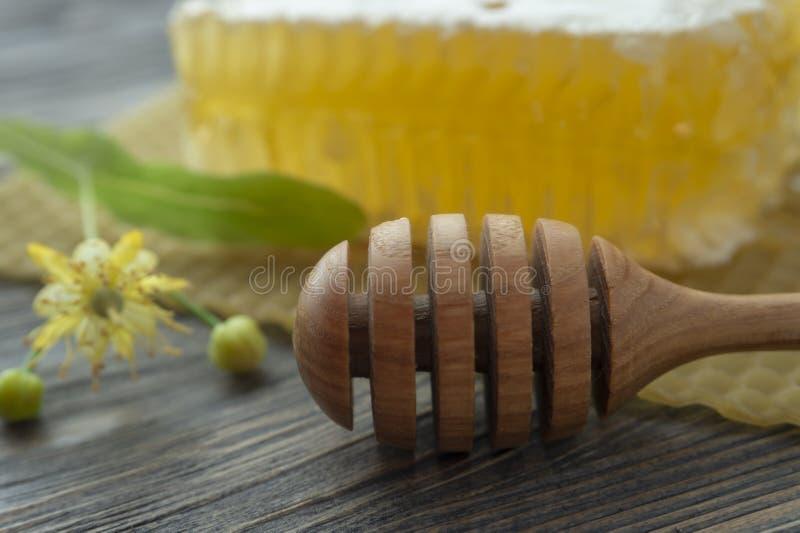 Bloco de mel de pente com flor e utensílio do Linden imagem de stock royalty free