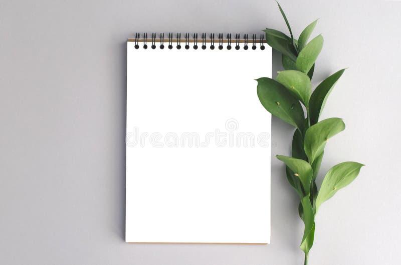 bloco de notas com um ramo verde foto de stock