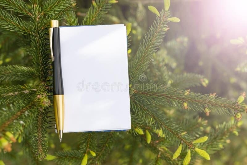 Bloco de notas e preto e pena do ouro no fundo de uma árvore de abeto conífera foto de stock