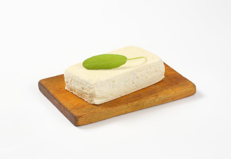 Bloco de Tofu fresco foto de stock