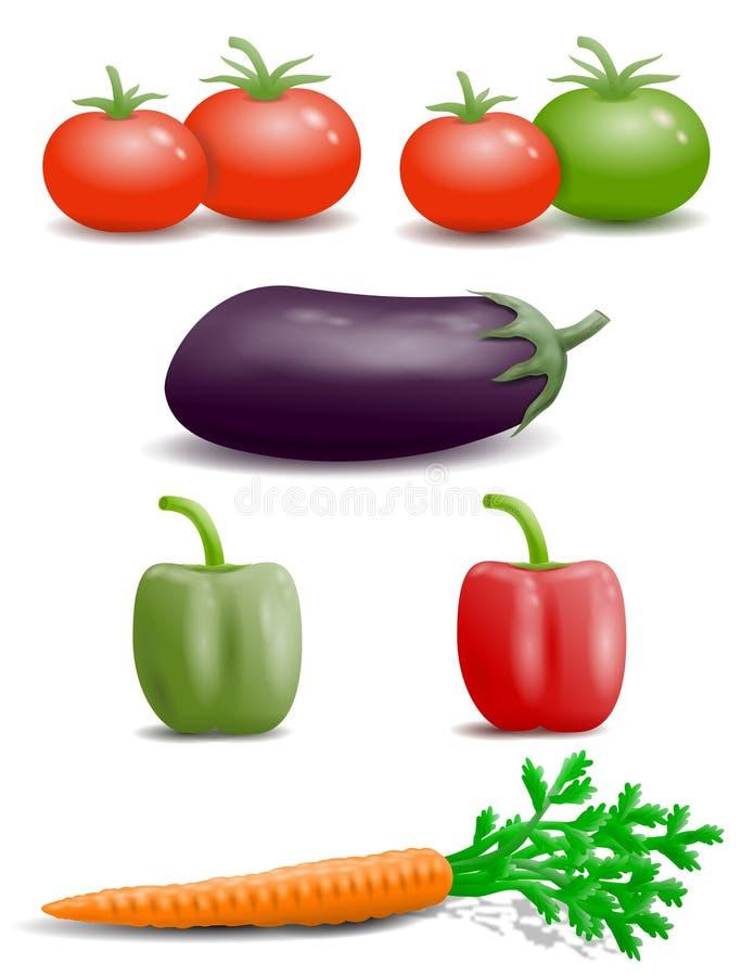 Bloco do projeto dos produtos frescos Beringela, pimenta, cenoura, tomate fotos de stock