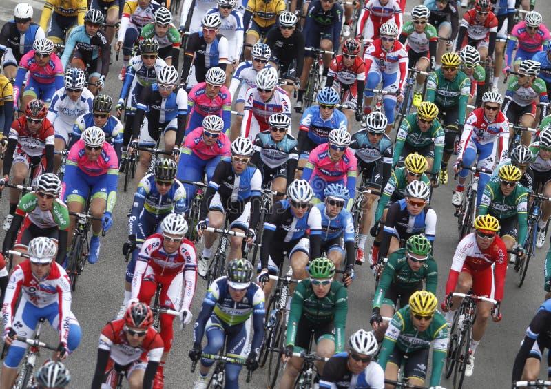 Bloco dos cavaleiros durante a raça de ciclismo imagens de stock