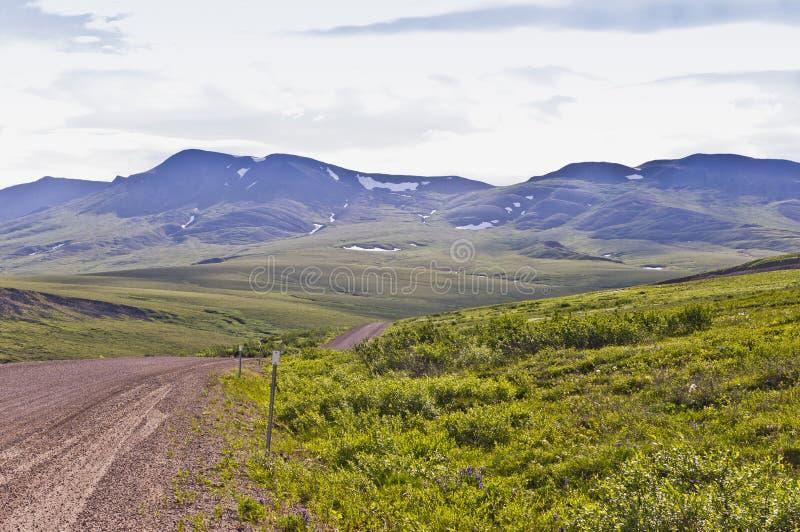 Blocos árticos do cenário e da neve fotos de stock