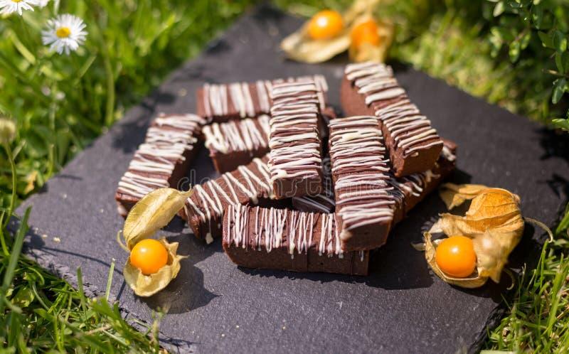 Blocos/barras simples do chocolate imagem de stock royalty free