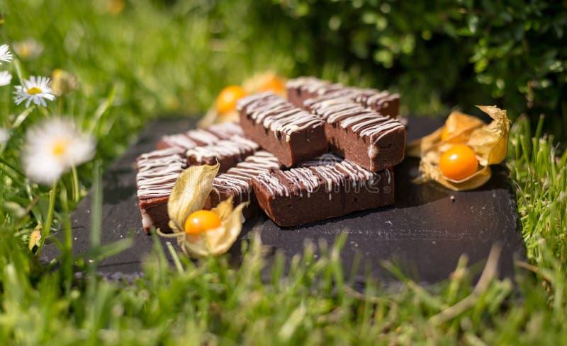 Blocos/barras simples do chocolate imagem de stock
