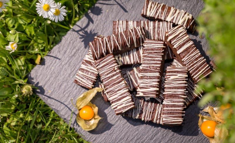 Blocos/barras simples do chocolate imagens de stock