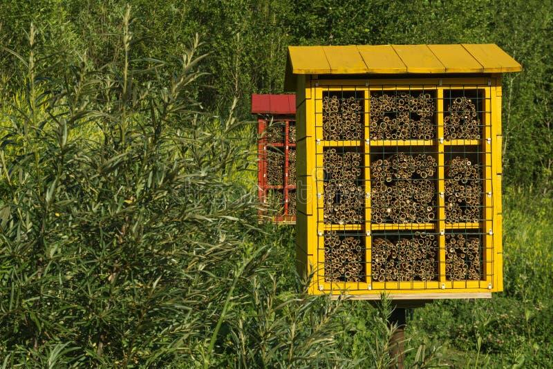Blocos caseiros do ninho para abelhas de pedreiro para a polinização das plantas imagem de stock royalty free