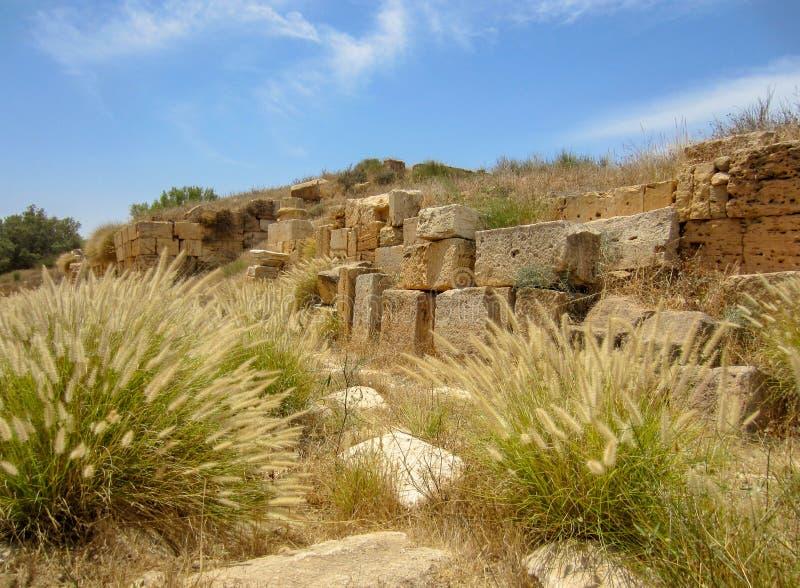 Blocos da pedra contra o céu azul com grama de fonte em ruínas romanas antigas de Leptis Magna em Líbia fotografia de stock royalty free