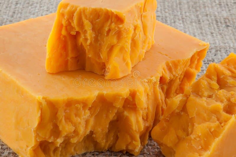 Blocos de queijo cheddar envelhecido imagem de stock