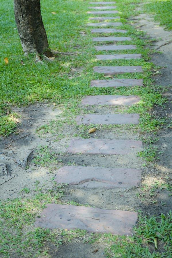 Blocos do cimento na grama verde foto de stock