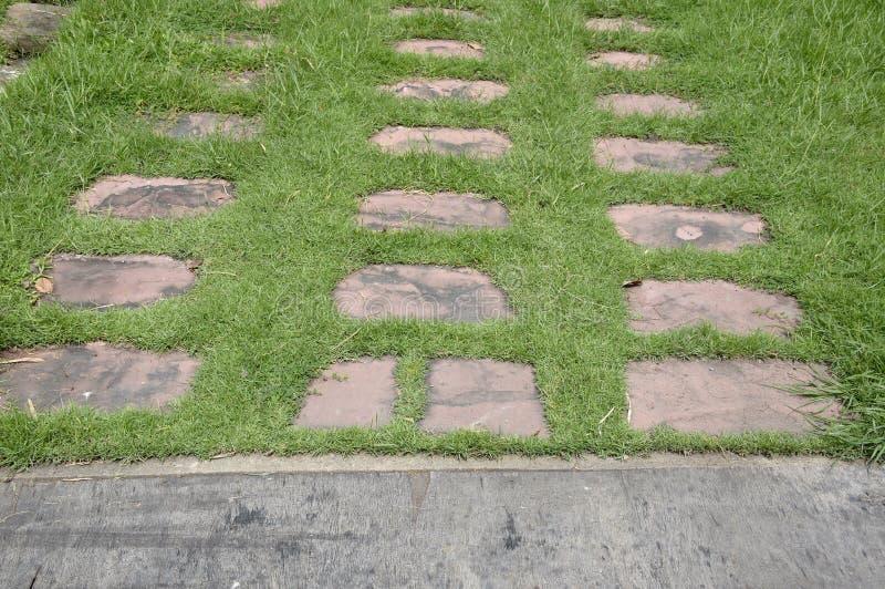 Blocos do cimento na grama verde fotos de stock