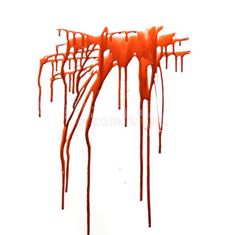 blod arkivbild