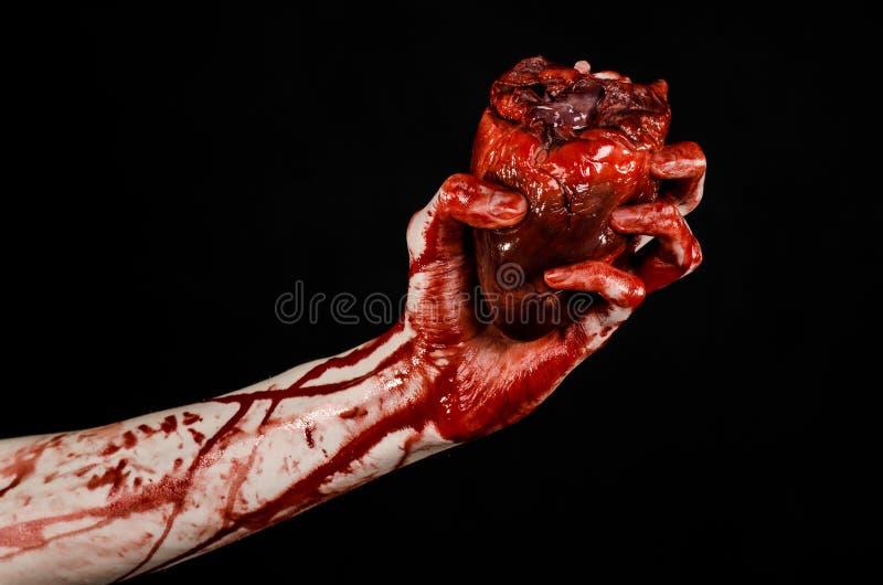 Blod- och allhelgonaaftontema: sönderriven blödande mänsklig hjärta för ruskig blodig handhåll som isoleras på svart bakgrund i s royaltyfri bild