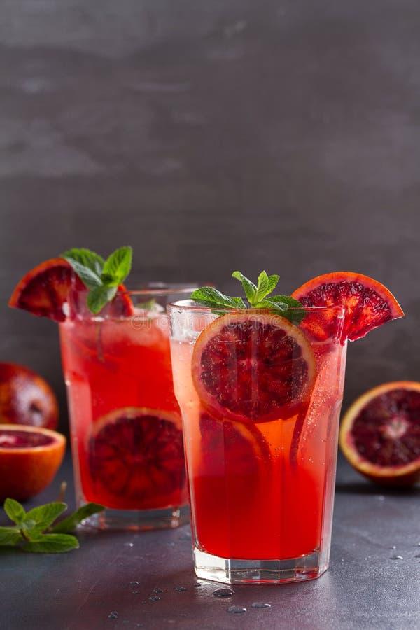 Blodapelsincoctail med skivor av citrusfrukter och mintkaramellen arkivfoto