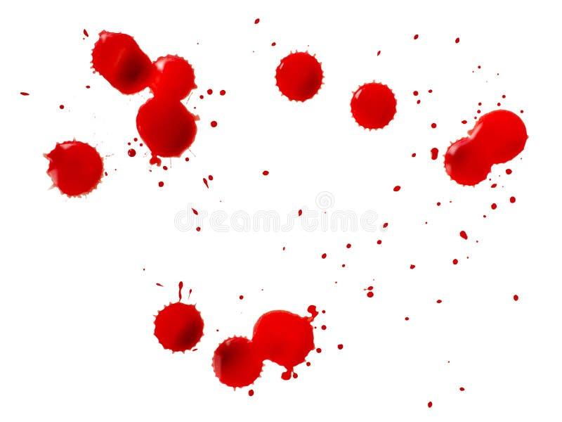Bloddroppar royaltyfri fotografi