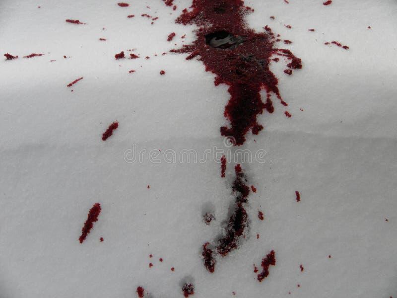 Blodfläck på snön arkivfoto