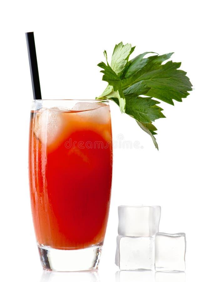 Blodiga mary för vodka drink med iskuber som isoleras på vit royaltyfria bilder