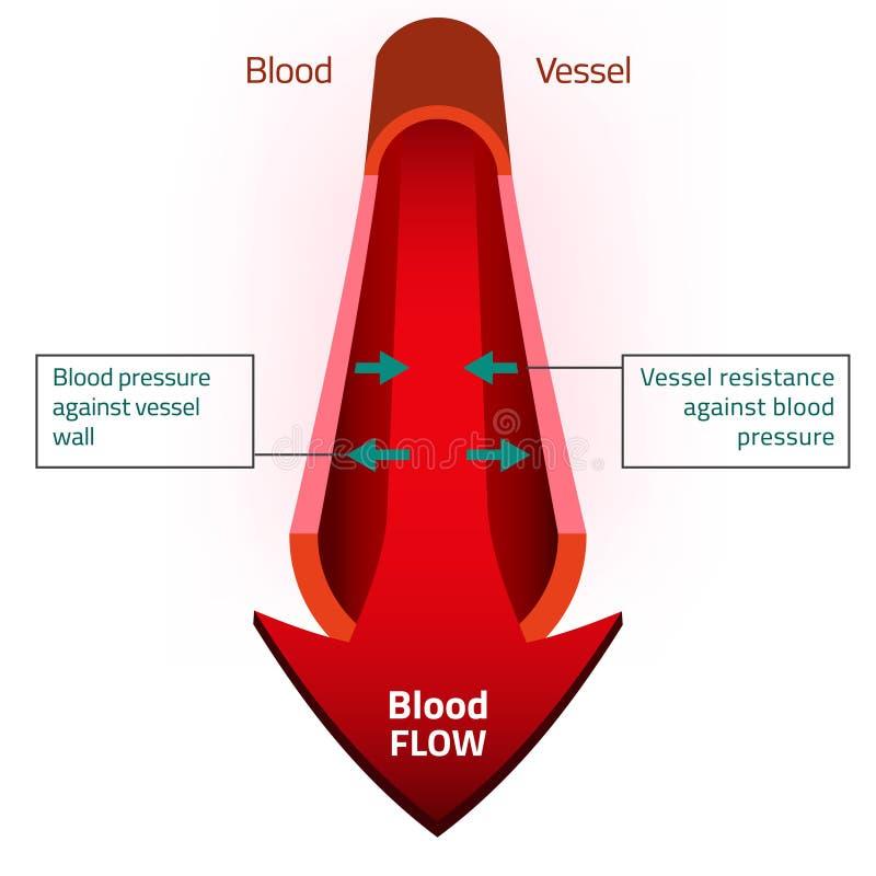 Blodvektorbild stock illustrationer