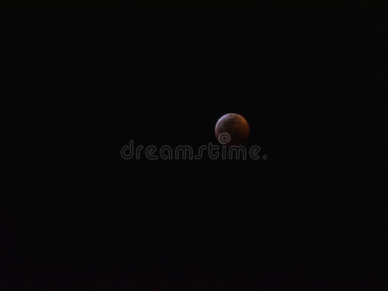 Bloed Wolf Lunar Eclipse 2019 stock afbeeldingen