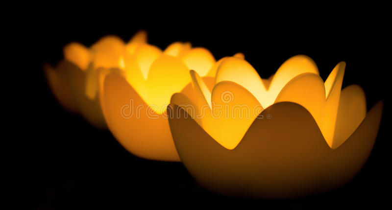 Bloei kaarsen stock foto's