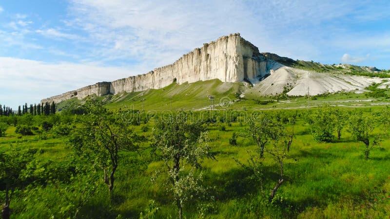 Bloeiend gebied van papaver op achtergrond van witte klippen schot Hoogste mening van mooi groen gebied met papaverbloemen bij stock fotografie