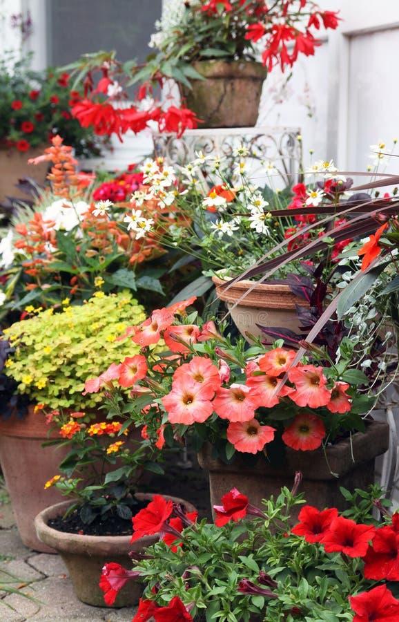 Bloeiende balkoninstallaties in decoratieve potten stock afbeelding