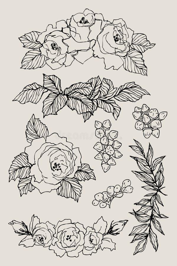 Bloeiende bloem Vastgestelde inzameling Hand getrokken uitstekende bloesemtakken op bruine achtergrond Vector illustratie rozen stock illustratie