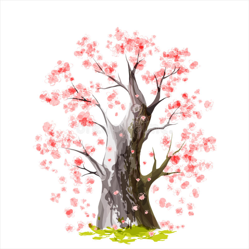 Bloeiende Japanse kersenboom royalty-vrije illustratie