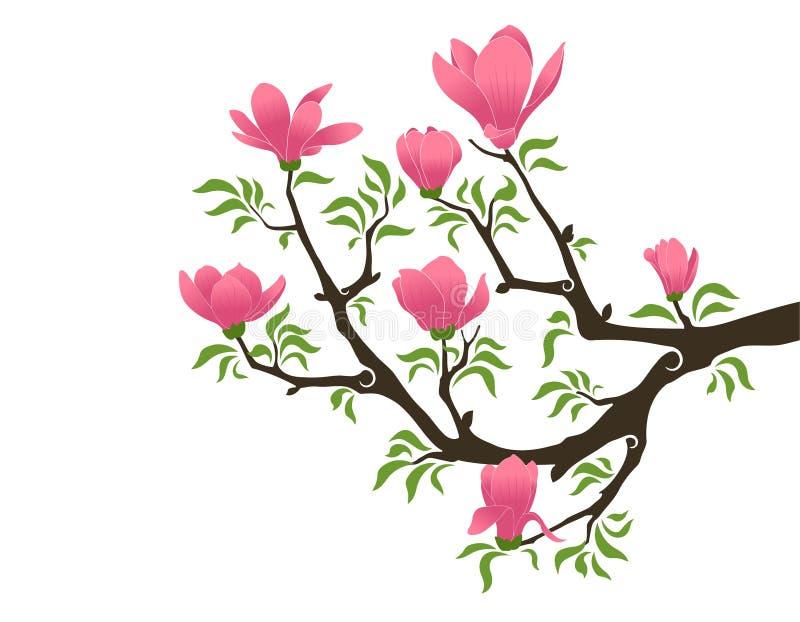 Bloeiende magnolia vector illustratie