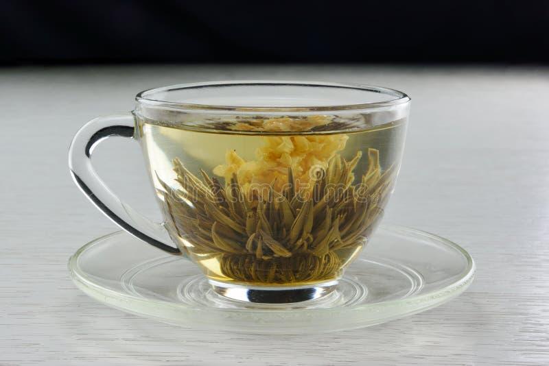 Bloeiende thee stock foto
