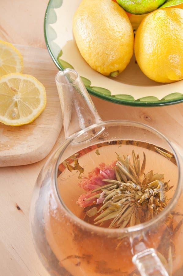 Bloeiende thee en citrusvrucht stock foto's