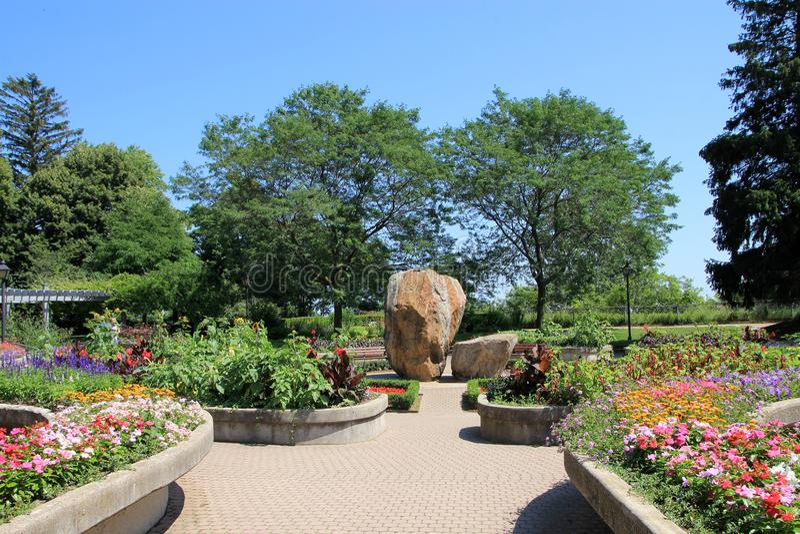 Bloeiende tuin royalty-vrije stock foto