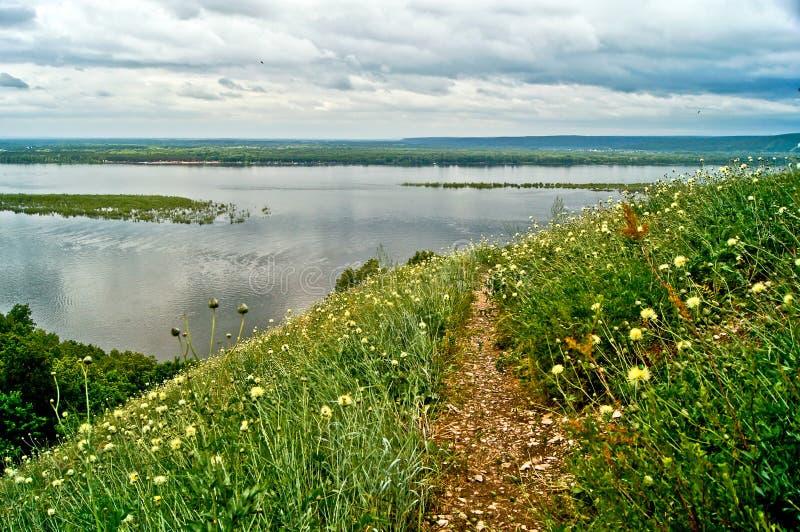 Bloeiende weide op de bank van de Volga Rivier. stock foto