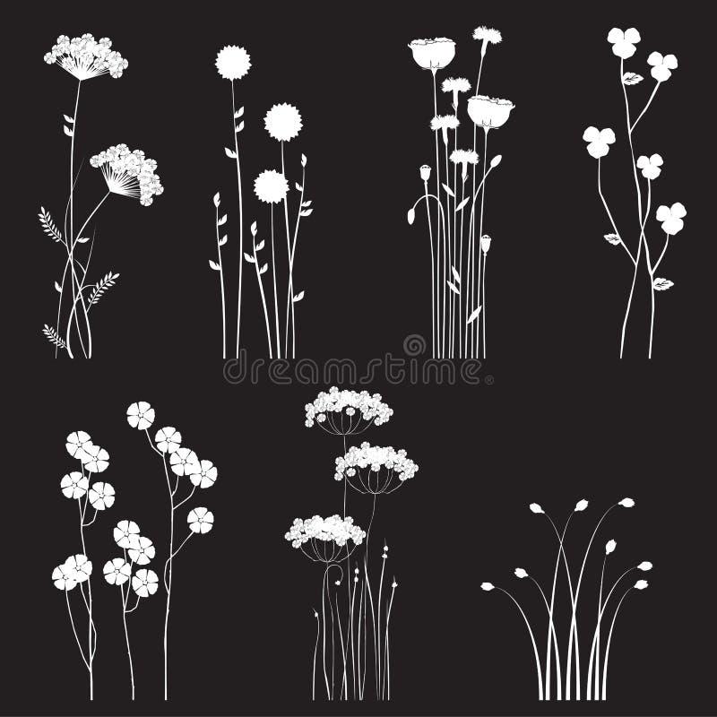 Bloeiende wilde die bloemen op een zwarte achtergrond worden gescheiden stock illustratie