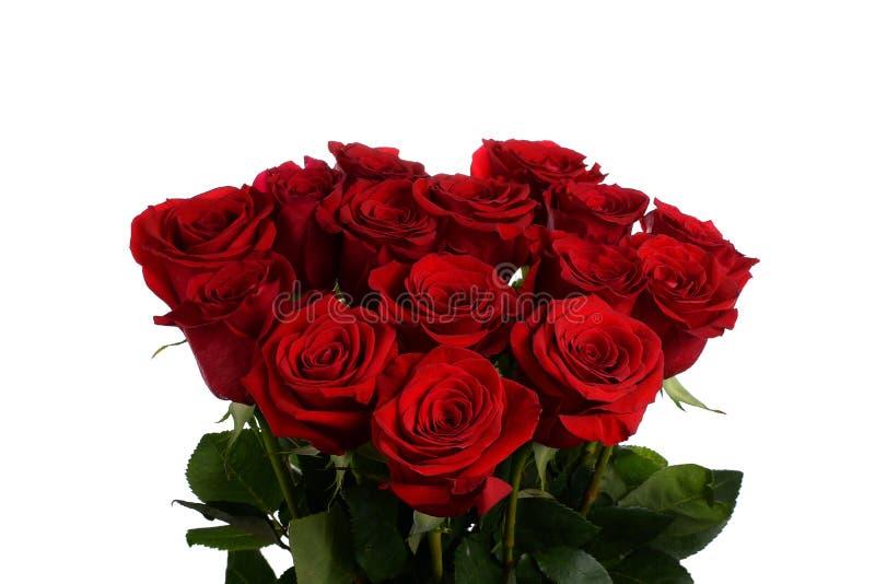 Bloeit een boeket van rode rozen stock fotografie