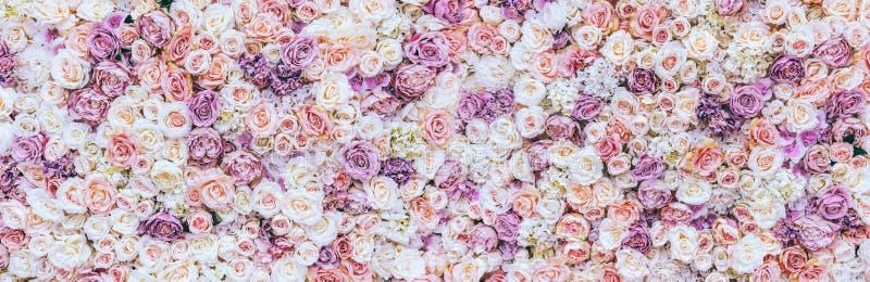 Bloeit muurachtergrond met verbazende rode en witte rozen, Huwelijksdecoratie, gemaakte hand - stock foto's