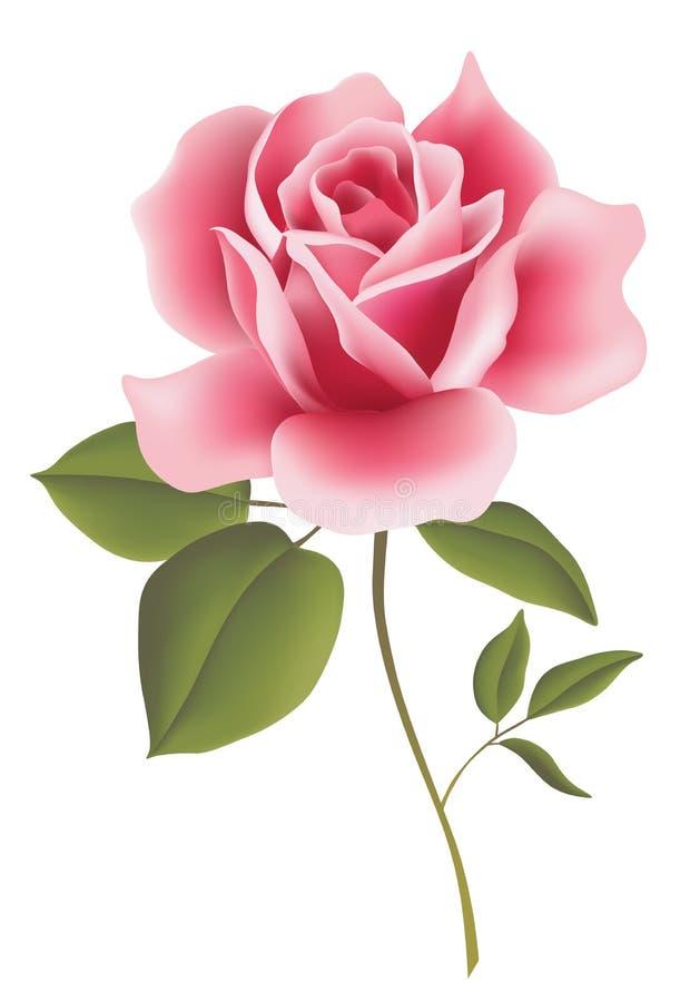 bloem stock illustratie
