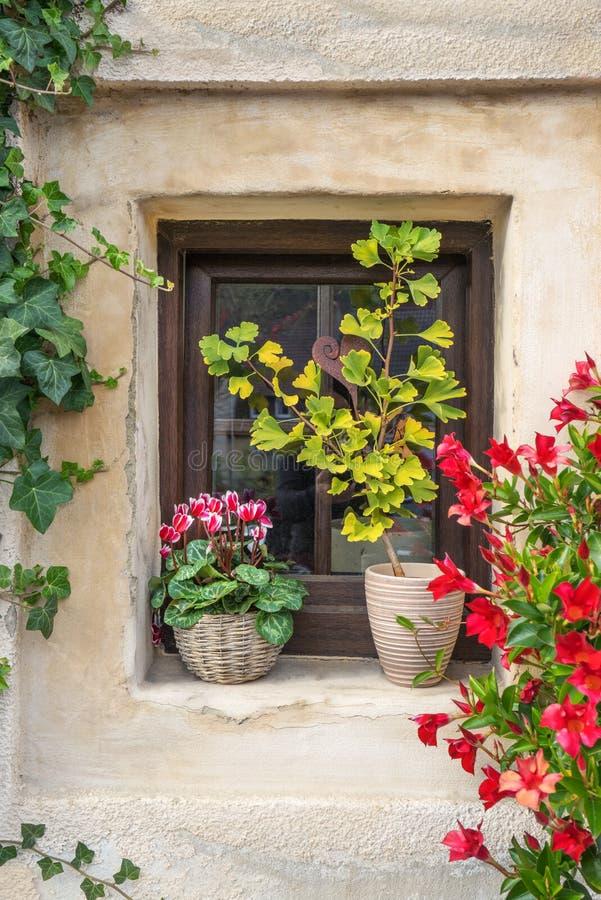 Bloem-Bedecked venster royalty-vrije stock afbeelding