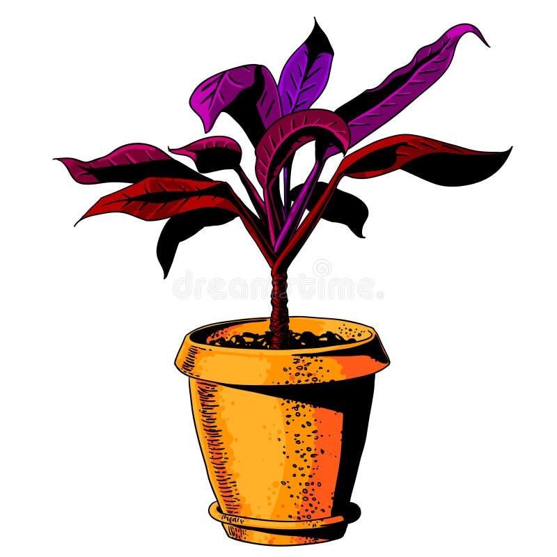 Bloem in een bloempot Kleurenvector vector illustratie
