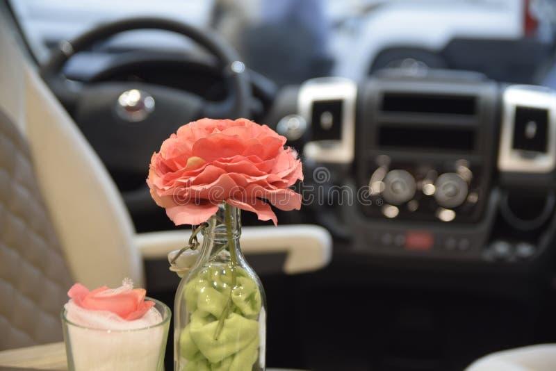 Bloem in een Fiat-caravanvoertuig stock fotografie