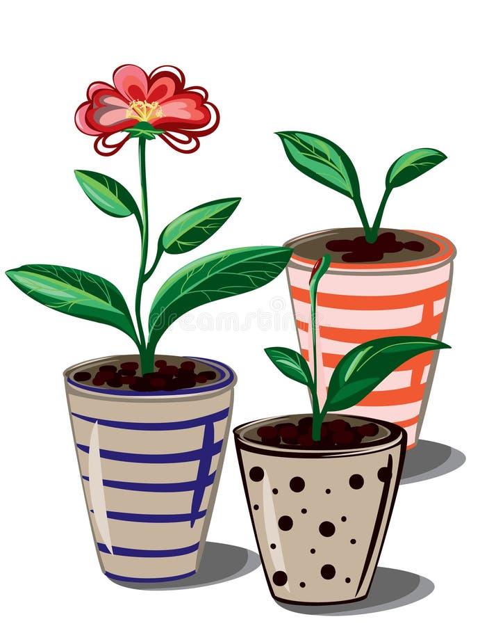 Bloem en potten vector illustratie
