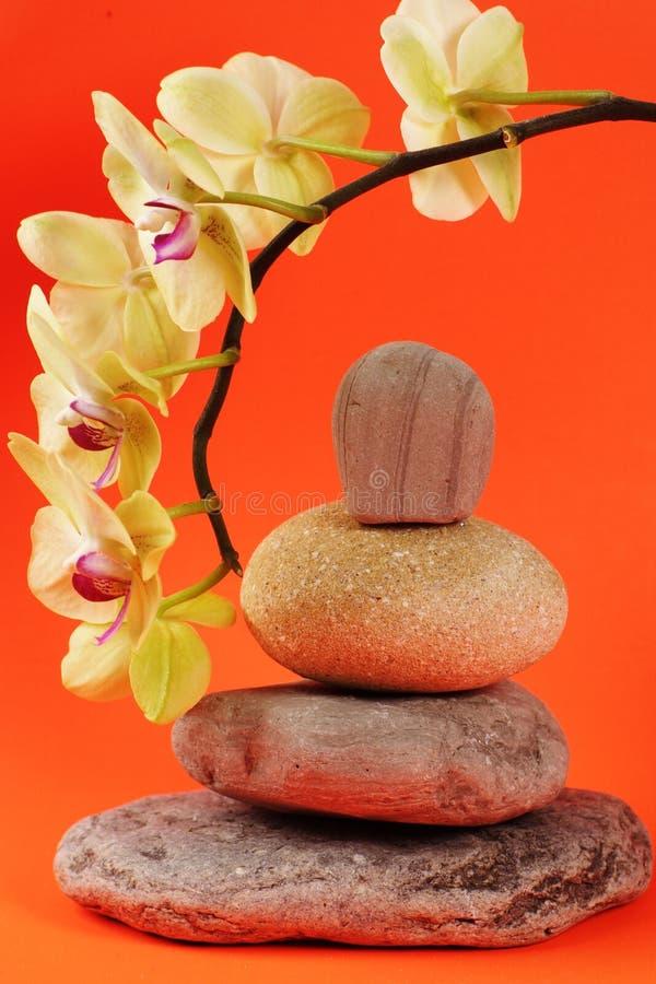 Bloem en stenen stock afbeelding
