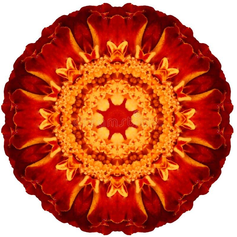 Bloem Mandala stock illustratie