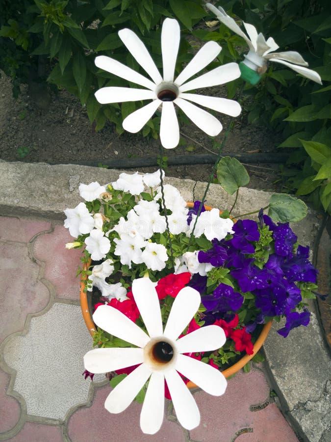 Bloem van een plastic fles De decoratie voor de tuin doet het zelf Hergebruiksplastiek Het decor van het afval Vaas voor bloemen stock foto
