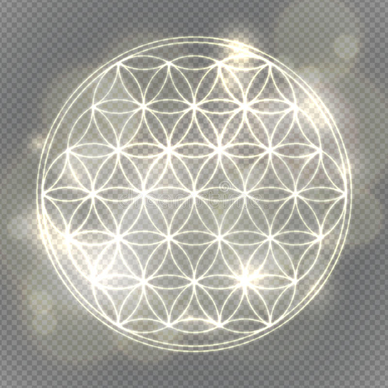 Bloem van het leven Heilige meetkunde, vector geestelijk symbool stock illustratie