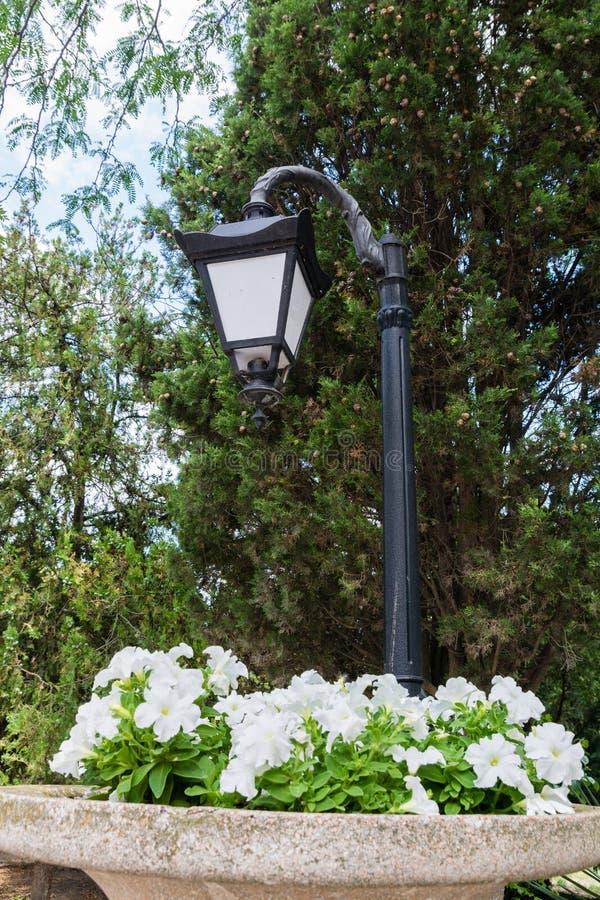 Bloembed onder een lantaarn stock afbeelding