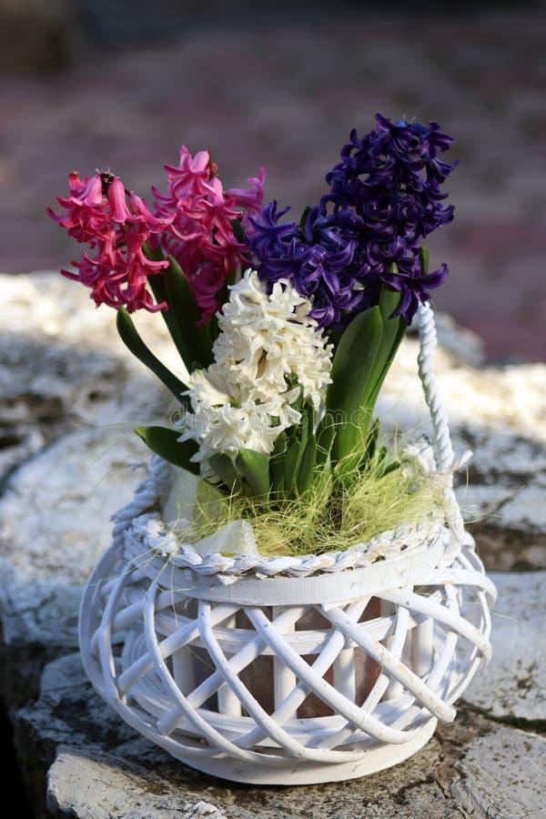Bloemdecoratie in witte bloempot stock foto's