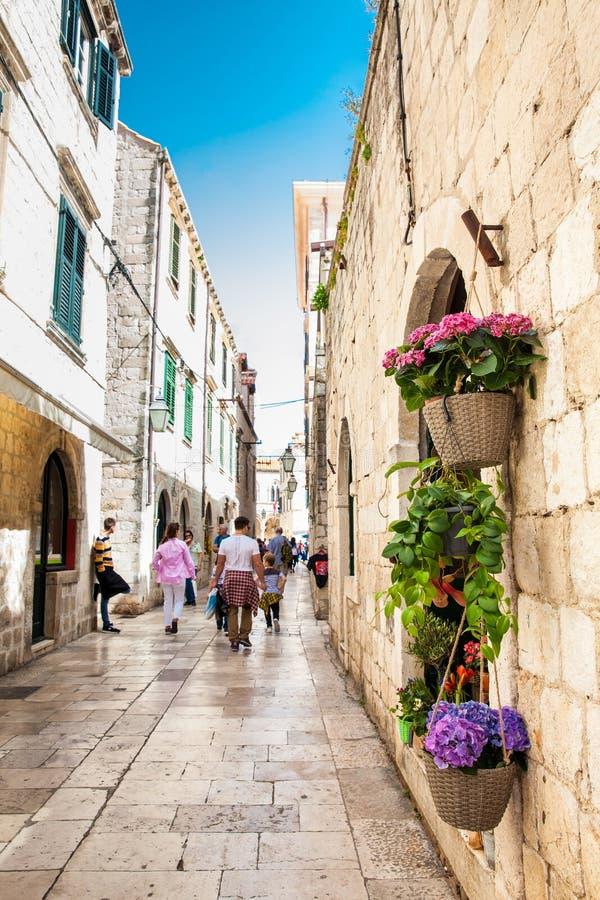 Bloemen aan het begin van de lente in de mooie stegen van de oude stad van Dubrovnik stock foto